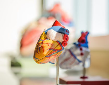 The World's Struggle Against Hypertension – The Role of Artificial Intelligence